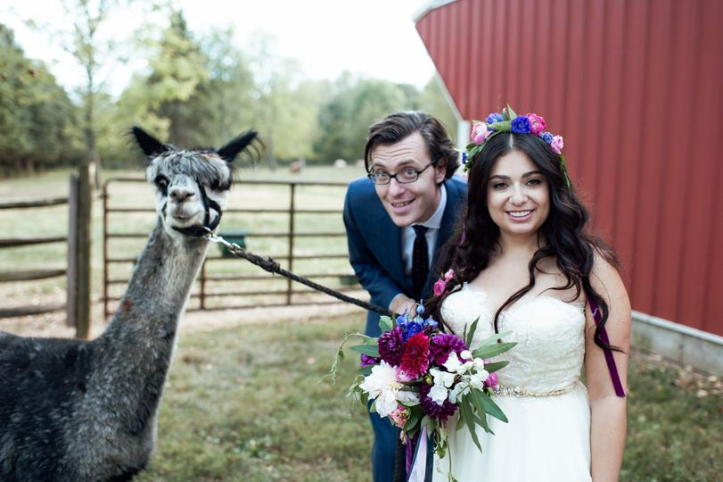 With the llama