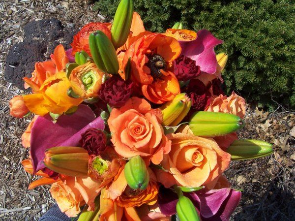 Tmx 1280353291097 Davisonbouquet2 Muscatine wedding florist