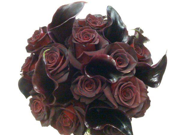 Tmx 1287504358317 Img1617 Muscatine wedding florist
