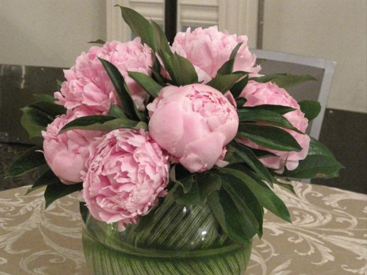 Tmx 1277850801247 IMG0853 Freehold, New Jersey wedding florist