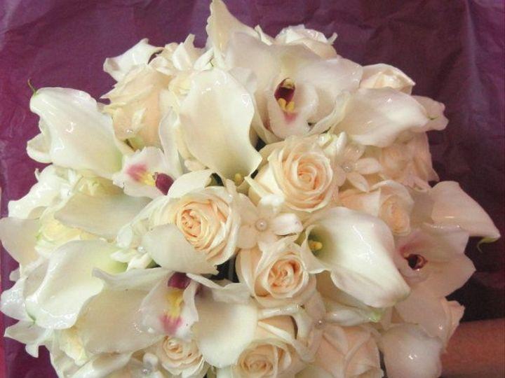Tmx 1277851208388 IMG1156 Freehold, New Jersey wedding florist