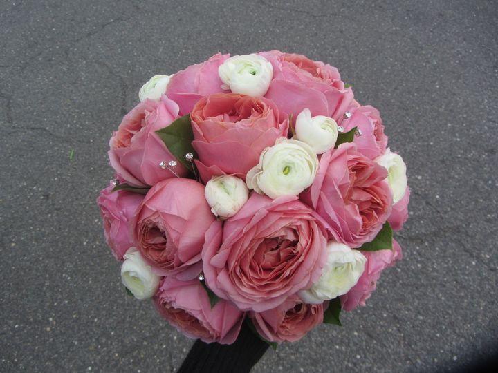 Tmx 1382377782009 Garden Rose Large Freehold, New Jersey wedding florist