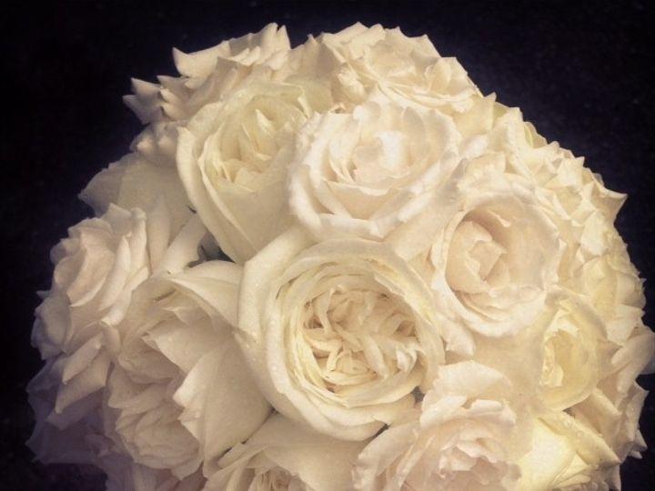 Tmx 1382377861754 White Garden Rose Freehold, New Jersey wedding florist