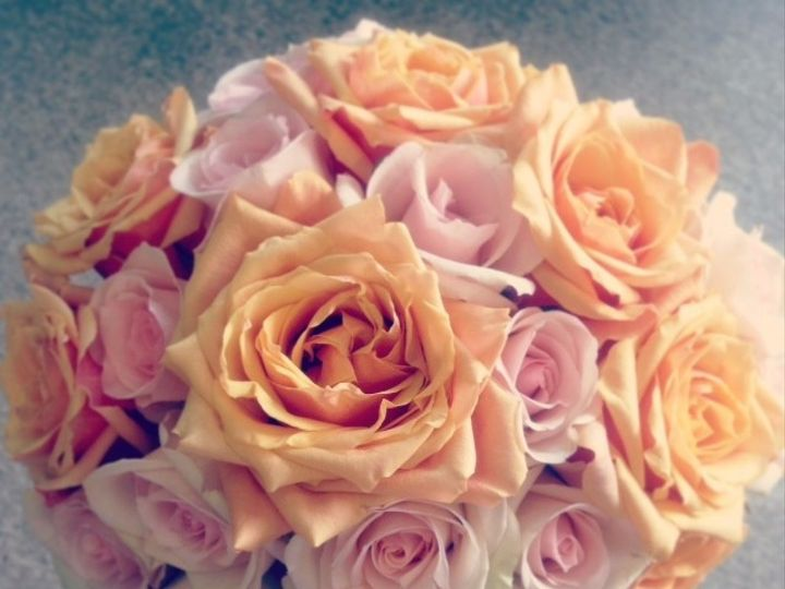 Tmx 1382377919625 Peach Rose Freehold, New Jersey wedding florist