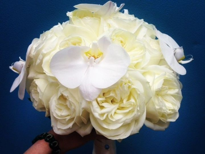 Tmx 1402600158061 White Phaleo Freehold, New Jersey wedding florist