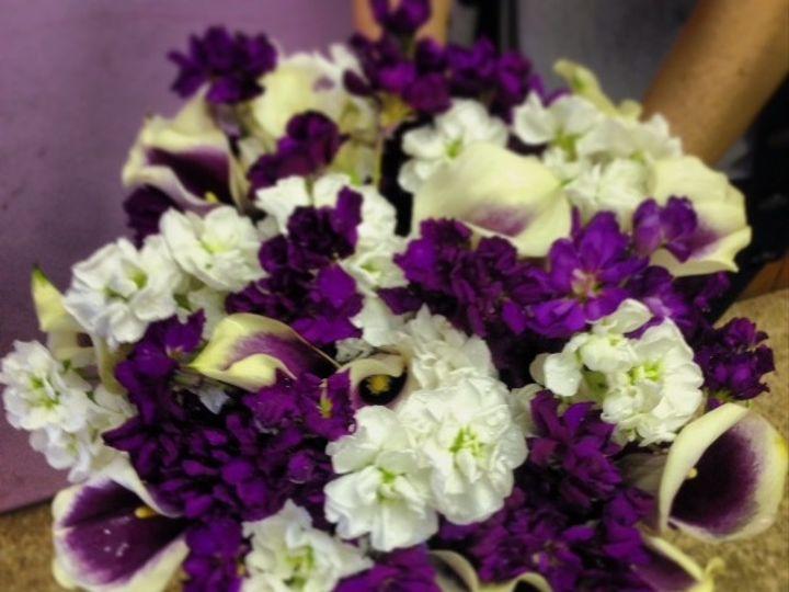 Tmx 1402600188612 Purples Freehold, New Jersey wedding florist
