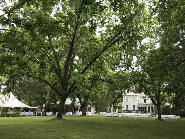 The Back Lawn