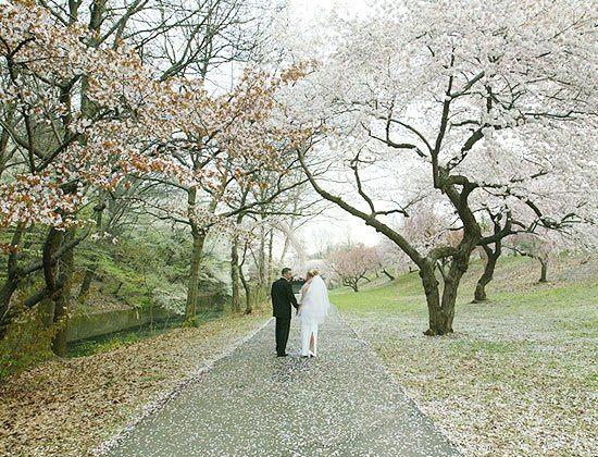 bridegroomwalkway