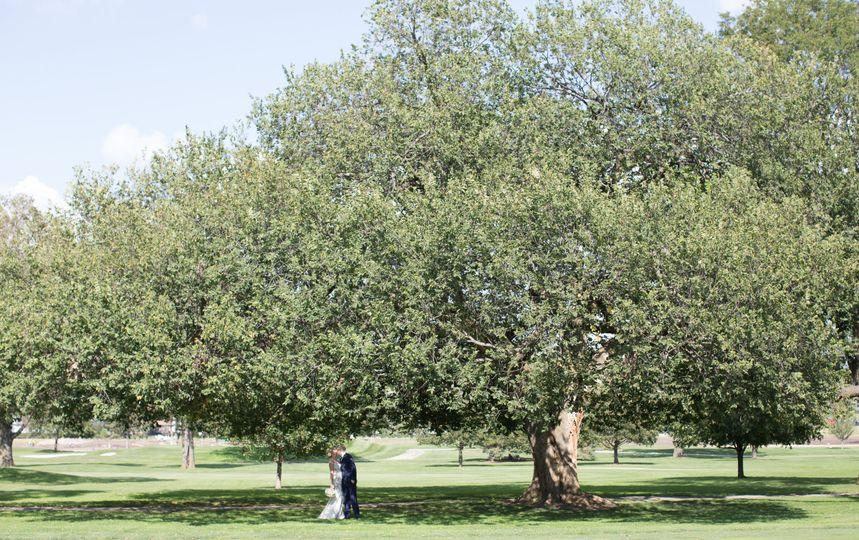 Wedding couple under a tree