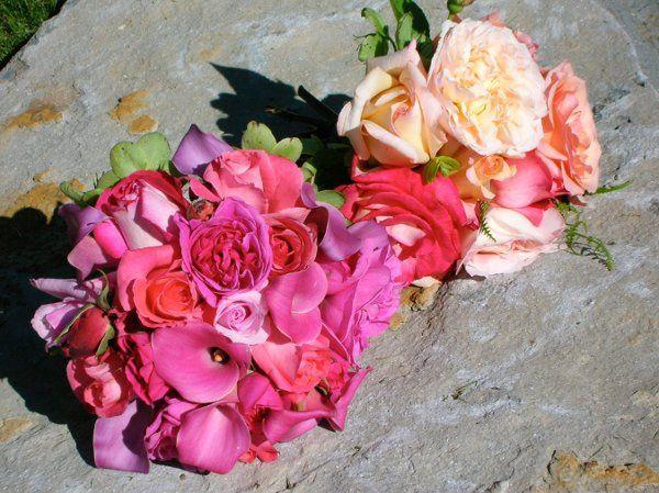 Tmx 1329860222510 DSCN2349 Petaluma wedding florist