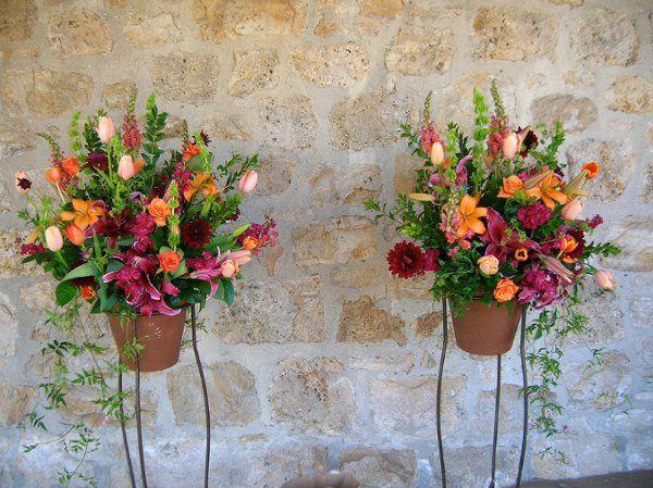 Tmx 1329860360814 DSCN1134 Petaluma wedding florist