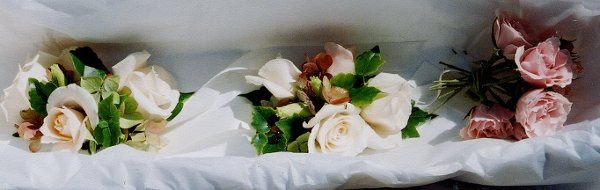 Tmx 1329860636225 00000006 Petaluma wedding florist