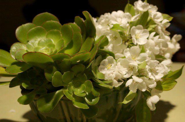 Tmx 1345227591550 DSC0115 Petaluma wedding florist