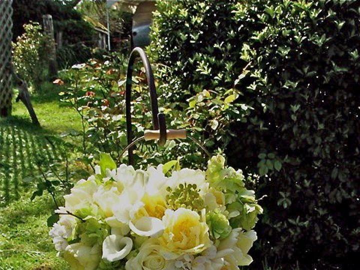 Tmx 1345227632732 DSCN2235 Petaluma wedding florist