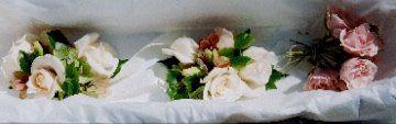 Tmx 1345920064064 00000006 Petaluma wedding florist