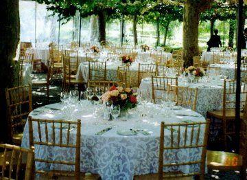 Tmx 1345920105107 00000012 Petaluma wedding florist
