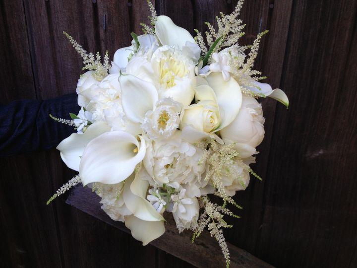 Tmx 1384987961585 Img027 Petaluma wedding florist