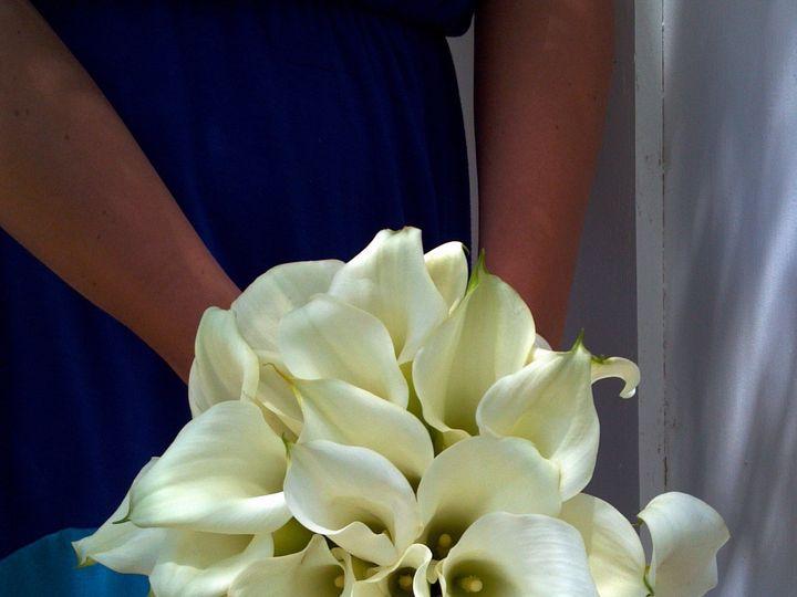 Tmx 1384988177820 2013 07 0612 57 0695 Petaluma wedding florist