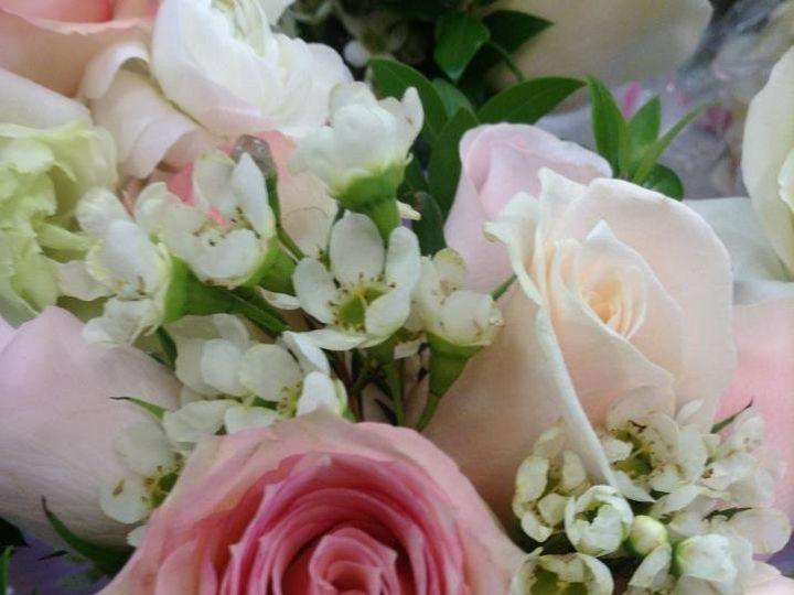 Tmx 1363740174285 537109595823613776367268299666n Maryville wedding florist
