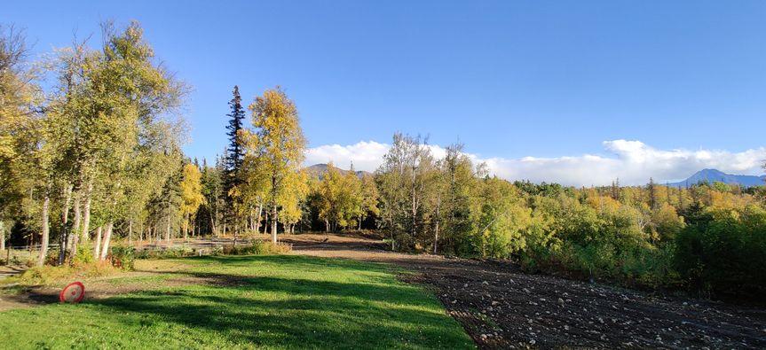 Lodge backyard landscaping