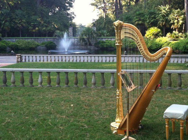 Harp in Norfolk Botanical Gardens