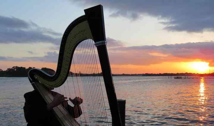 Vince Zentner Harpist