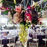 Tmx 542252 10151830112493819 1888688737 N 51 30099 1570115478 Greensboro, NC wedding catering