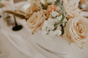 Taylor Rae Weddings