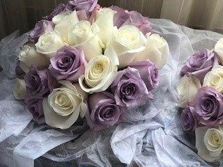Tmx Img 3491 51 365099 158929624228556 Lafayette Hill, Pennsylvania wedding venue