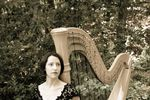 Amy Kortus, Harpist image