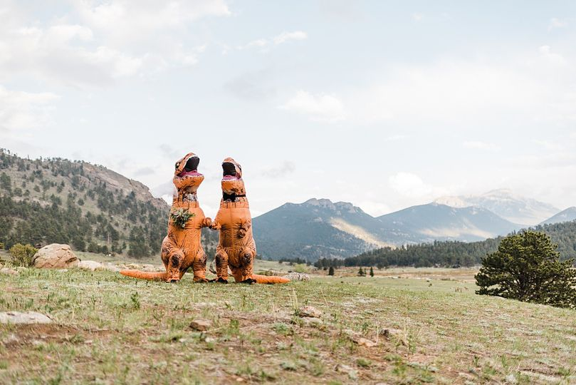 Bride and Groom Dinosaurs