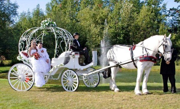 """Kim & John escorted by our horse """"Charlie"""""""