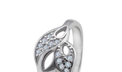 Silver Shine 1