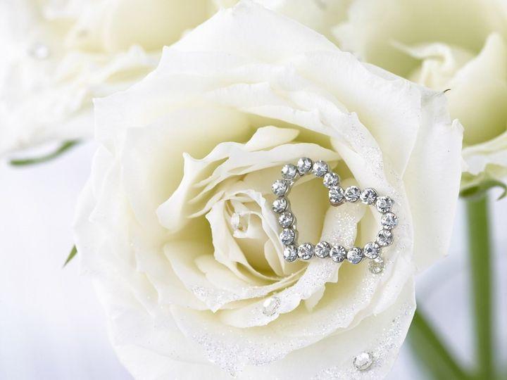 elegant rose 51 1903499 157769611914978