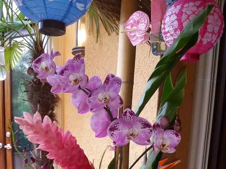 Tmx 20150321 114458 51 534499 159974558357493 Houston, TX wedding florist