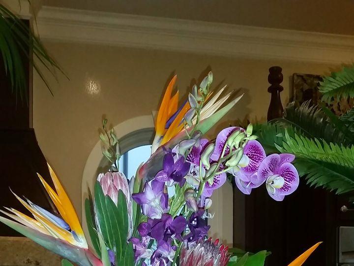 Tmx 20150321 114610 51 534499 159974558532939 Houston, TX wedding florist