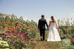 Merlot & Lace Weddings and Events