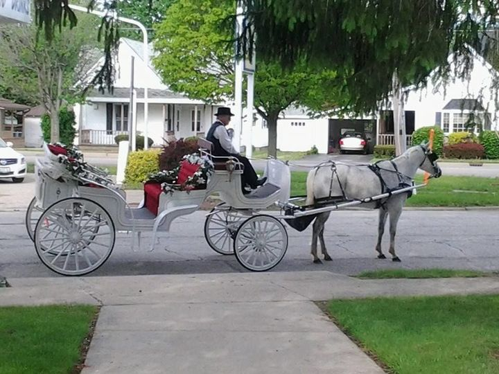 Side view of Vis-a-Vis wedding carriage.