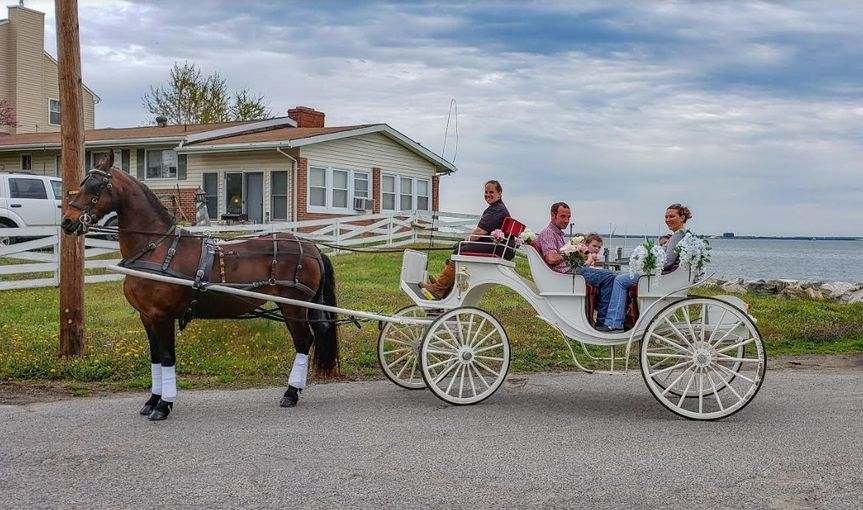 Family in carriage