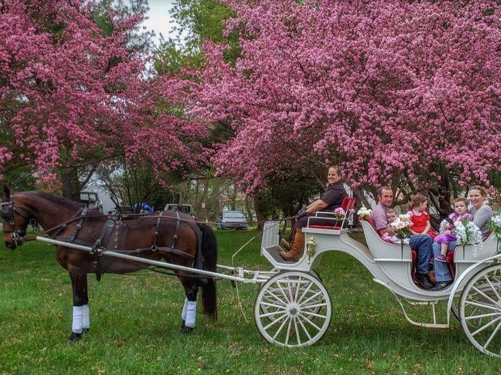 Tmx Tang2 51 1063599 1558017734 Pasadena, MD wedding transportation