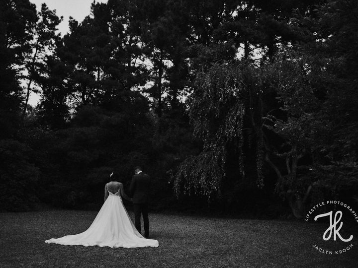 Tmx  Dsc5940 51 1044599 Virginia Beach, VA wedding photography