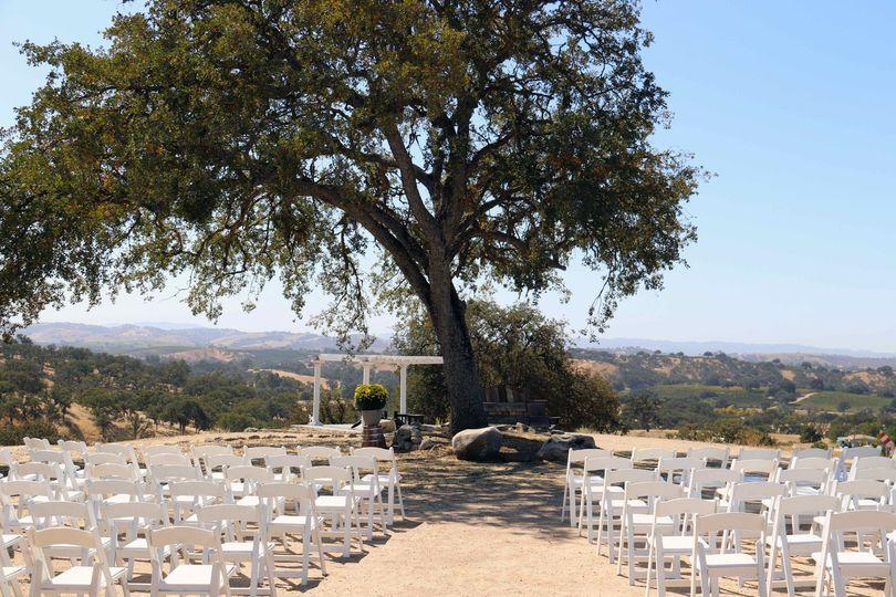 Ceremonies under ancient oaks