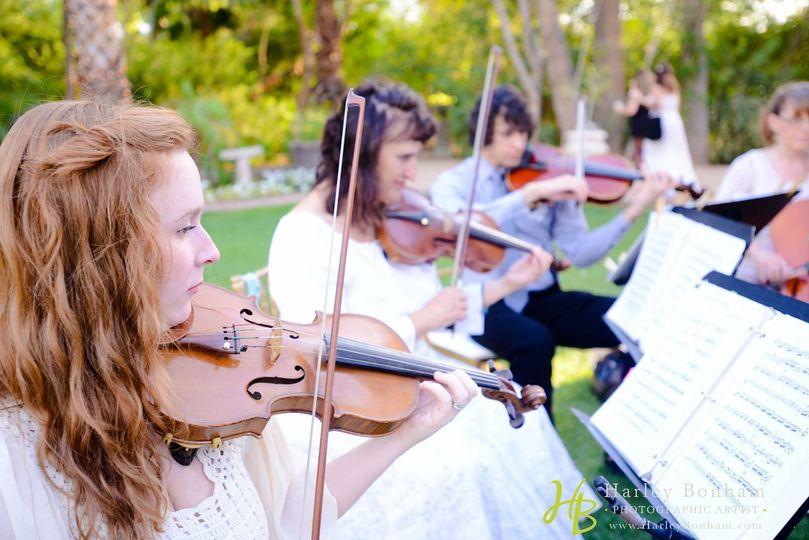 Sweetwater Strings