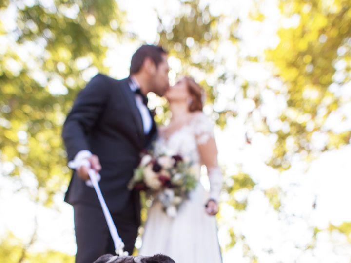 Tmx Dsc 0052 51 760799 157427953582945 Silver Spring, MD wedding photography