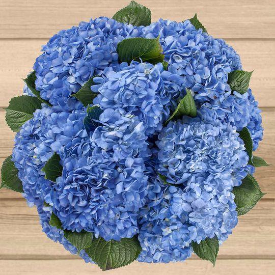 Blue, low, simple centerpiece