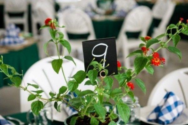 Tmx 1467140610978 Carsoncni Photo 22 16b7506643 Deerfield wedding venue