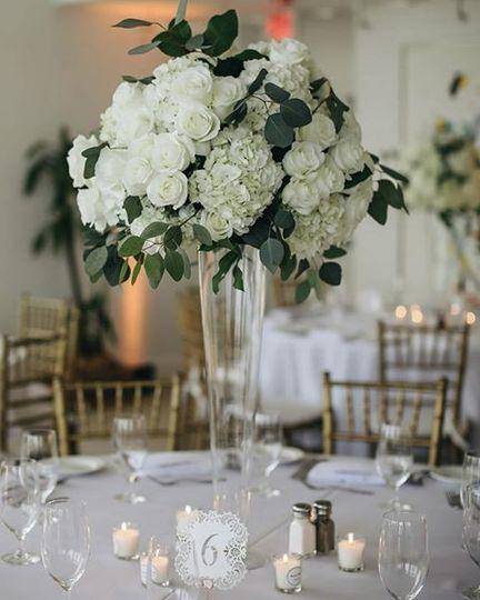 Beautiful white blooms