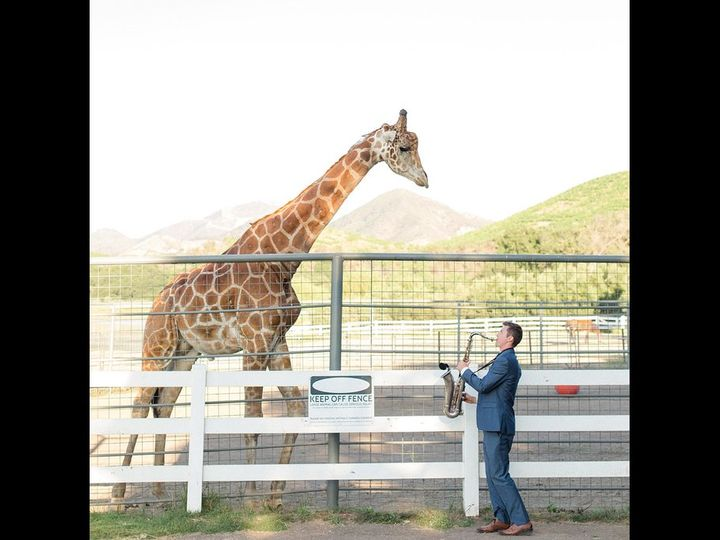 Tmx Giraffe 16 9 51 982899 160834249622144 Newport Beach, CA wedding band