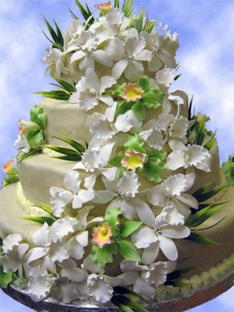 Four tier round cake with cascade of sugarpaste orchids.