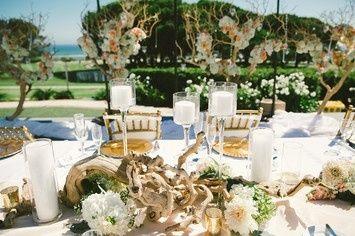 Tmx 1414422155208 Manzanita Tree And Grapewood Centerpieces And Larg Largo wedding